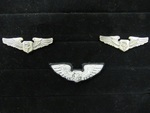 U.S. Military: Flight Badge by Normadeane Armstrong Ph.D, A.N.P.